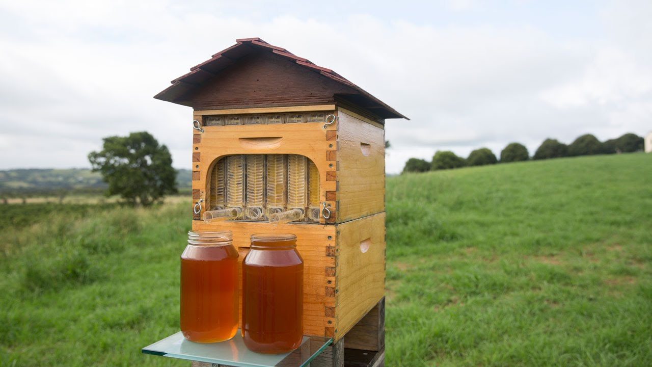 Father-son duo spent 10 years on honeymaking invention, results are awesome